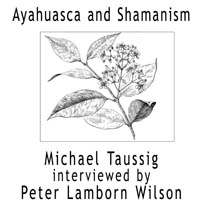 Ayahuasca and Shamanism